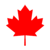 【カナダ入国】トロントに到着&寒すぎてびっくり。グレイハウンドの旅