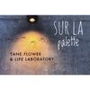TANE FLOWER さんの新店舗で『Sur la Palette』という企画展が2018/11/23~12/02まで開催【富山イベント情報】