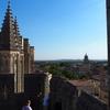 アヴィニヨン観光 ローマ教皇宮殿と街歩き(9日目)