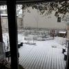 雪景色と最低気温