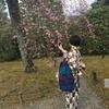 もみ消して、冬 〜着物で京都祇園へ