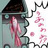 【ベタ】水槽の中でも油断は禁物……な話【ペットトーク】