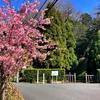 逗子から鎌倉名越、浄明寺、二階堂、今泉を経て横浜市南部まで歩く
