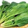 「ほうれん草」にはダイエットに必要な栄養素が全て含まれている⁉︎優秀過ぎる栄養効果をご紹介!