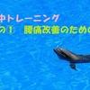 水中トレーニングをカンタン楽しく♪ その①腰痛改善のための