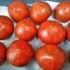 揖保川みのりトマト