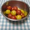 ミニトマト&10食品群チェックのための副菜2種