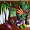れんぶつオーガニック 鳥取県 無農薬・有機栽培のお野菜
