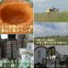 北海道ツー9日目 美瑛の駅&パッチワークの丘 ^^!