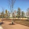 【冬】品川シーズンテラス 子連れにお勧めのイベント広場と公園