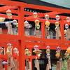 新潟の初夏は風鈴の音を聞きながらハス鑑賞【白山神社】