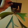 レモイネイの胞子葉の成長ラッシュ。