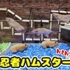 【ハムスター 動画】賢いハムスター!作った障害物を柔軟な体で駆け抜ける姿がおもしろい!