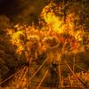 超危険な愛知の奇祭!昼や冷たい海の中、夜は灼熱の炎の中『西尾市・鳥羽の火祭り』(2018)