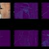 画風変換をtensorflowで実装し、最適化の項を変化させた時の出力画像の変化を見る