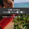 一年中生マグロが格安!沖縄へ行くならマグロを食べないと絶対損!