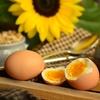 有精卵、ゆで卵にしたら見た目と味にギャップありすぎ問題