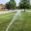 隣の芝は青い。The grass is always greener on the other side. 在宅勤務でそれを実感しています。
