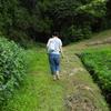 岡山県某所  静かな森の中の源泉