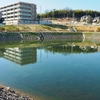 神の池(愛知県名古屋)