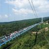 日本最長 富士を望む大吊橋『三島スカイウォーク』MISHIMA SKYWALK