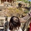 単身赴任でもないけれど、母子家庭的な我が家の休日@名古屋市動植物園