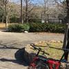 【大阪/東大阪市】日の下、枚岡神社