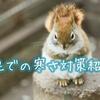 【コーデ公開】自宅での寒さ対策。超寒がりでも快適コーデ紹介!