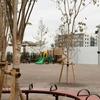 2018/11/5に開園した後の「おかのうえ公園」写真リポート(開発で変わりゆく中野の景色シリーズ)