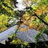 国東半島の紅葉スポット 富貴寺(ふきじ)大堂の見ごろは12月初旬かな 2015年