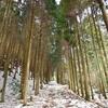 山行記 莇ヶ岳