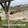 台風19号のつめ跡