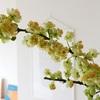 満開のアオモジと花粉問題