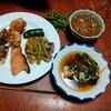 幸運な病のレシピ( 2369 )夜:汁、鳥の炙り焼き、豚もやし炒め