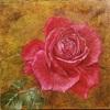 混合技法 またまた薔薇描いてます