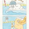 ネコノヒー「温水プール」