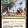 好きなカードを紹介していく。第六十回「禁忌の果樹園」