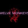 【視聴】TWELVE MONKEYS(12 Monkeys)【感想】