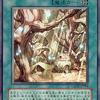 【遊戯王 環境】魔法族の里が閃刀姫対策でメイン・サイドデッキに採用される理由と価格・値段