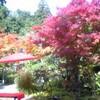 松島の楽旅