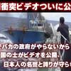 ついに尖閣諸島中国船衝突ビデオを誰かが流出させYouTubeで世界へ公開!よくやった!