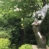彫刻の森で見つけた自然の造形美