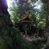 ◆3/29京都四条クリスタルカフェさん主催のアカシックのワークショップです。