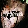【ブログ初月PV報告】僕がブログを1か月続けて感じたこと。