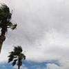 台風の名前ってどうやって付けられるの??台風、ハリケーン、サイクロンの違いって??