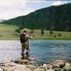 モンゴルには森が乏しいのに、なぜ川には魚が豊富に生息しているのか。