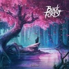Black Forest / Dream