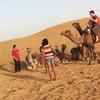 一泊二日!モロッコマラケシュからサハラ砂漠ツアー体験記