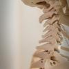 身の回りの物の配置で骨は歪む。