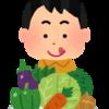 野菜をたくさん食べたいときに私がよく行くお店、まとめました